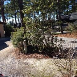Pineglen motorcoach rv park aree sosta per camper for Parkway motors in panama city florida