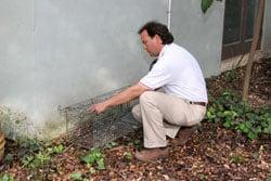 Accurate Pest Control: 4243 Gatecrest, San Antonio, TX
