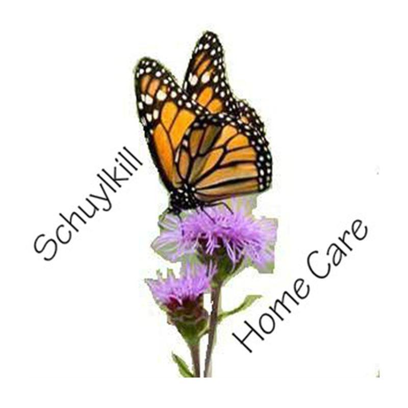 Schuylkill Home Care: 12 Saint John St, Schuylkill Haven, PA