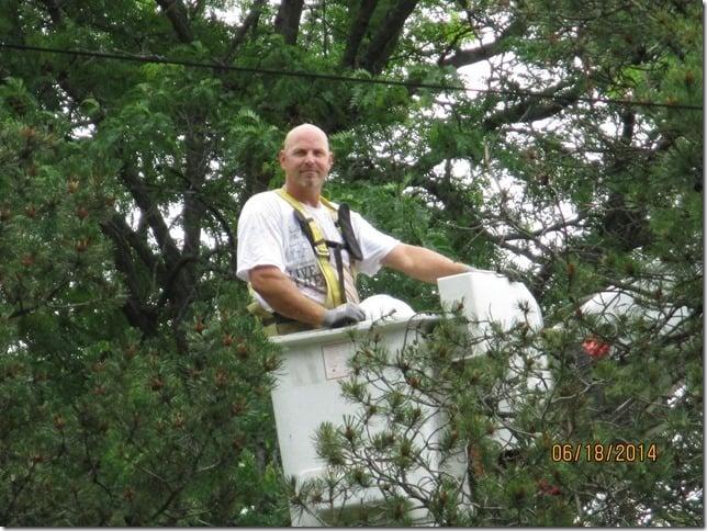 Timbermen Tree Service: 11890 E Bethel Rd, Rochelle, IL
