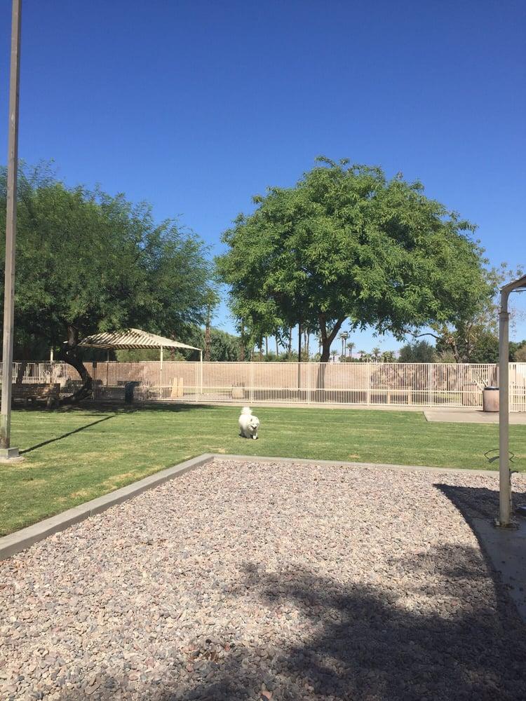 Palm desert dog park dog parks palm desert ca united for Desert motor palm desert ca