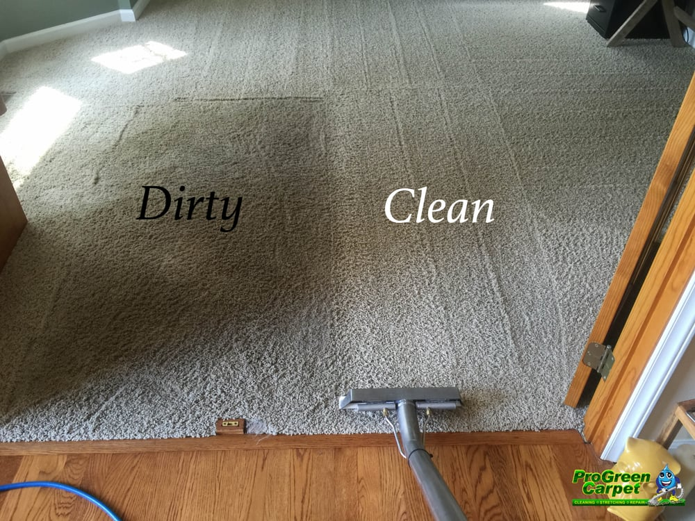 Progreen carpet carpet cleaning yelp - Often clean carpets keep best state ...