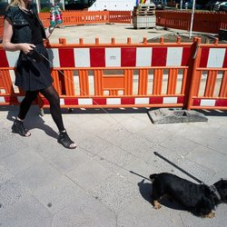 Perth Temporary Fencing - 11 Photos - Fences & Gates - 2/454