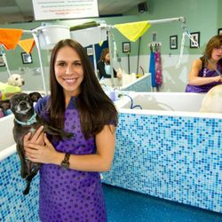 Scrubbers self serve dog wash professional grooming 32 fotos y foto de scrubbers self serve dog wash professional grooming west bloomfield mi solutioingenieria Gallery
