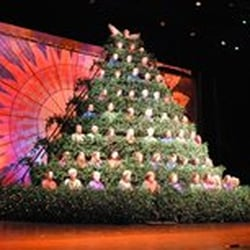 Photo of Singing Christmas Tree - Charlotte NC United States. Charlotteu0027s First and & Singing Christmas Tree - Christmas Trees - 1900 Queens Rd W ... azcodes.com