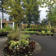 Photo Of Shorty S Garden Center Vancouver Wa United States A Beautiful