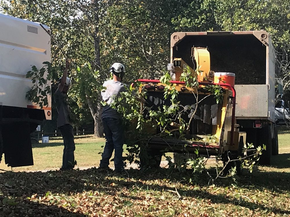 Cumberland Tree Service: 2045 Seven Mile Ferry Rd, Clarksville, TN