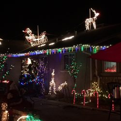 Christmas Tree Lane - 20 Photos - Christmas Trees - Henry Ave, Ceres ...