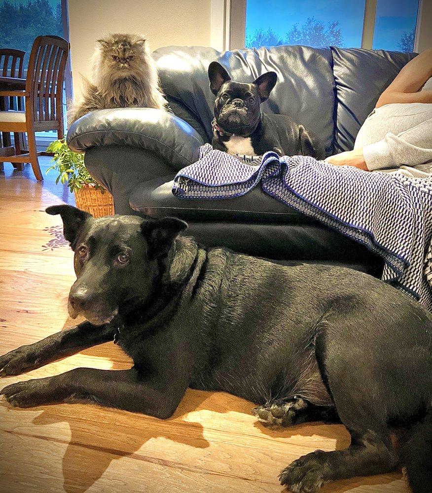 Kaspari Veterinary: 4762 Beckley Rd, Battle Creek, MI