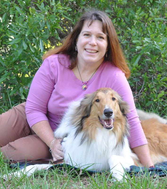 The Doggie Diva: Largo, FL