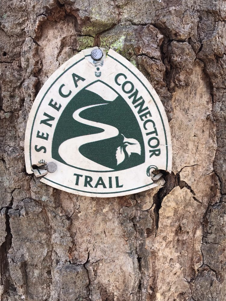 Seneca Park: 101-149 Seneca Rd, Great Falls, VA
