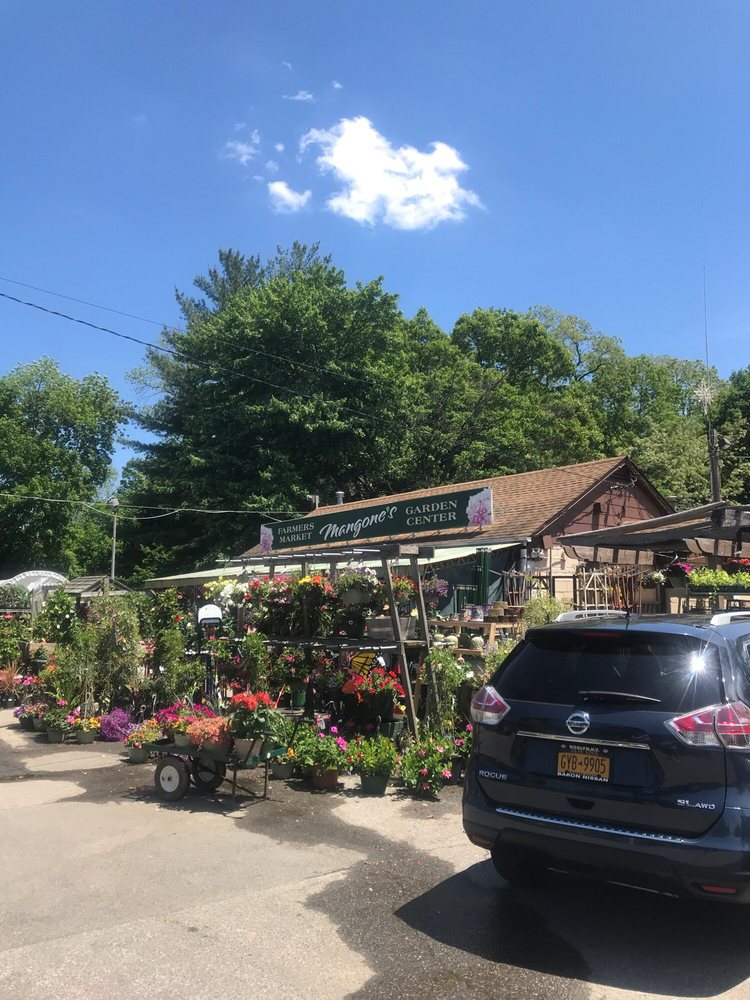 Mangone's Garden Center: 1427 E Boston Post Rd, Mamaroneck, NY