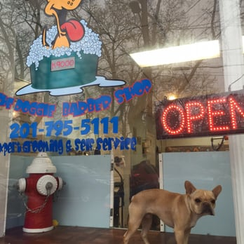 Hoboken dog wash 30 photos 70 reviews pet groomers 211 4th photo of hoboken dog wash hoboken nj united states get rid of solutioingenieria Gallery