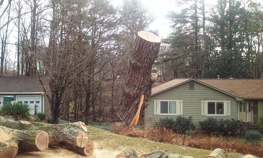Timberline Tree Service & Landscaping: 1710 Kennesaw Due West Rd NW, Kennesaw, GA
