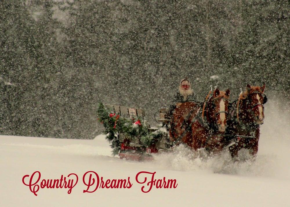 Country Dreams Farm: 260 Pellerin Rd, Plattsburgh, NY