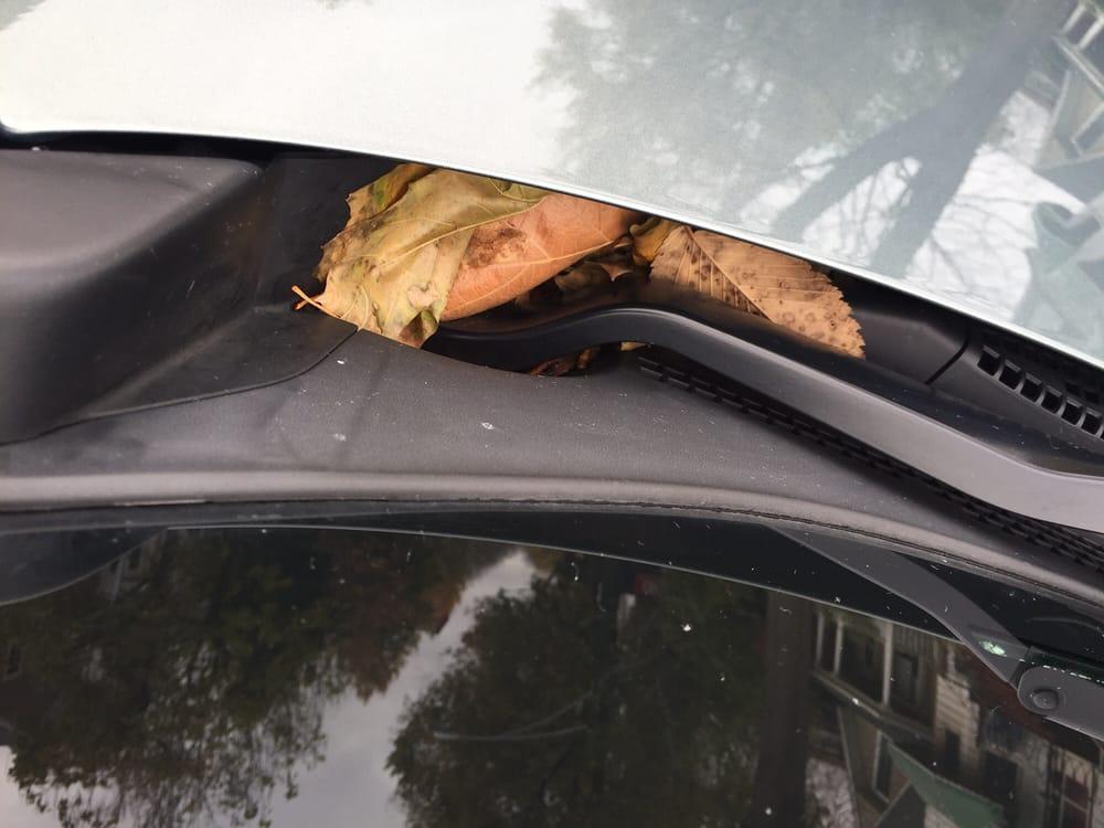 Honest Car Wash Reviews