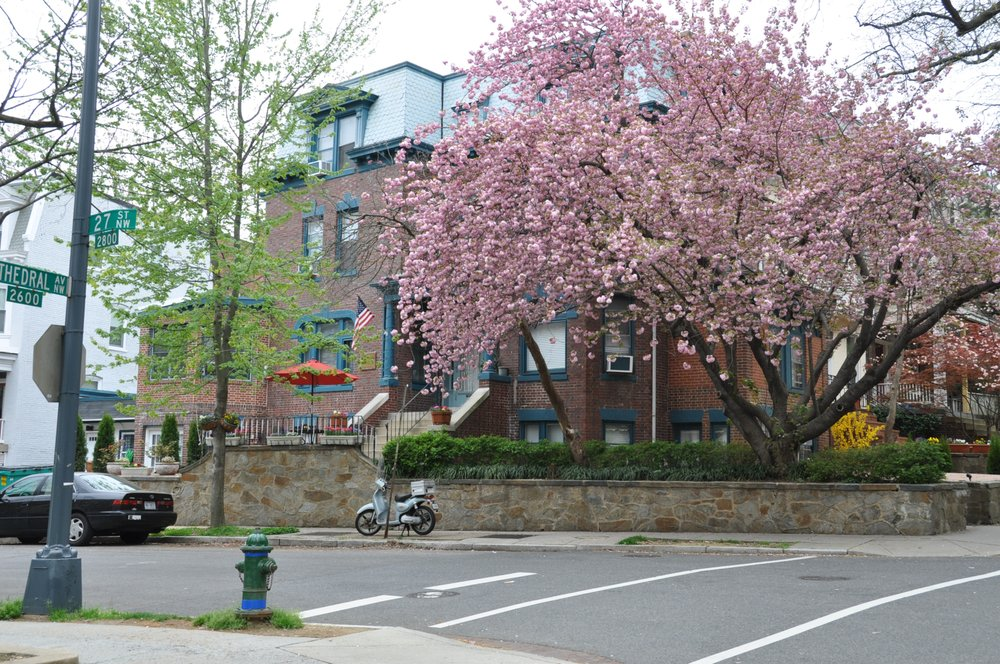 Kalorama Guest House: 2700 Cathedral Ave NW, Washington, DC, DC