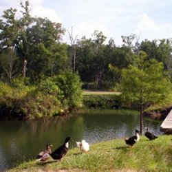 Photo Of Home Place RV Park