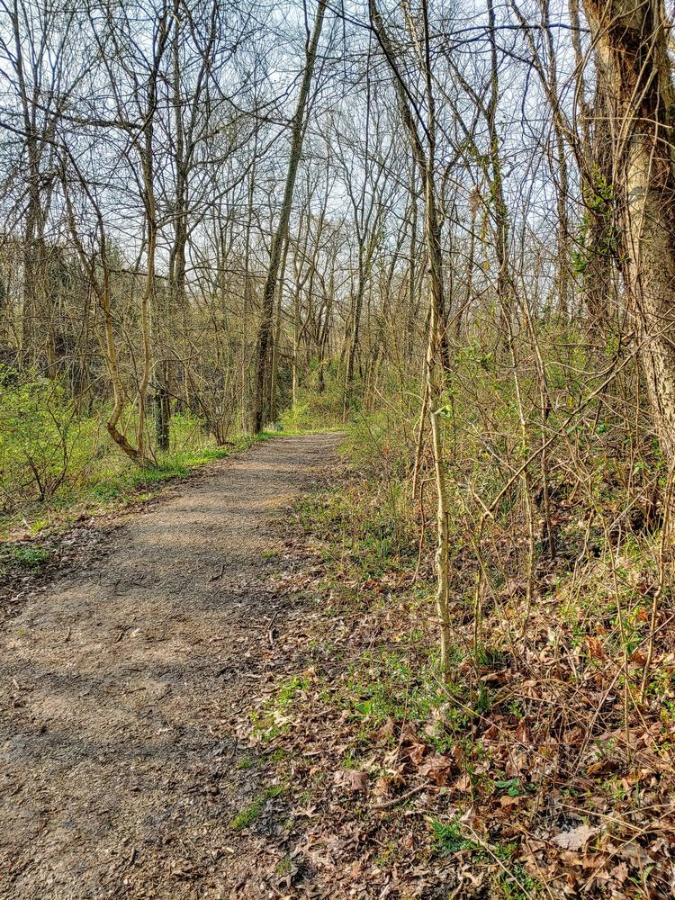 Woodland Mound: 8250 Old Kellogg Rd, Cincinnati, OH