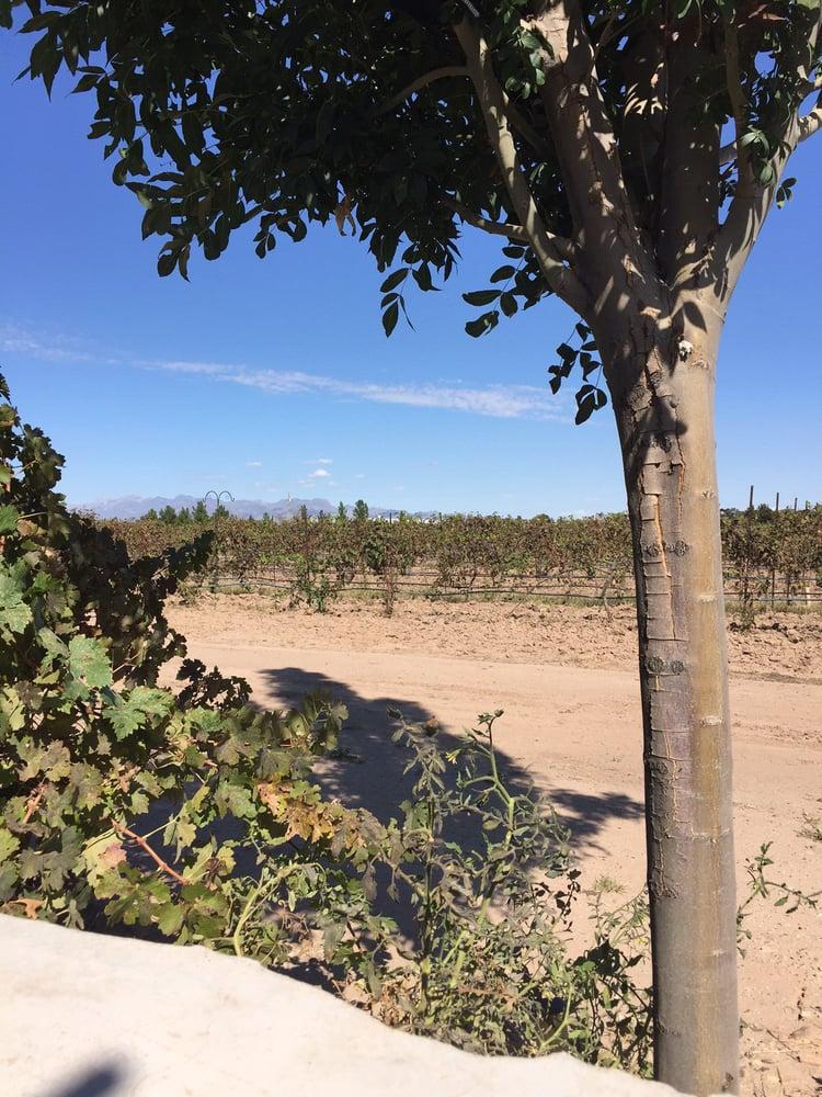 Sombra Antigua Winery: 430 La Vina Rd, Chamberino, NM