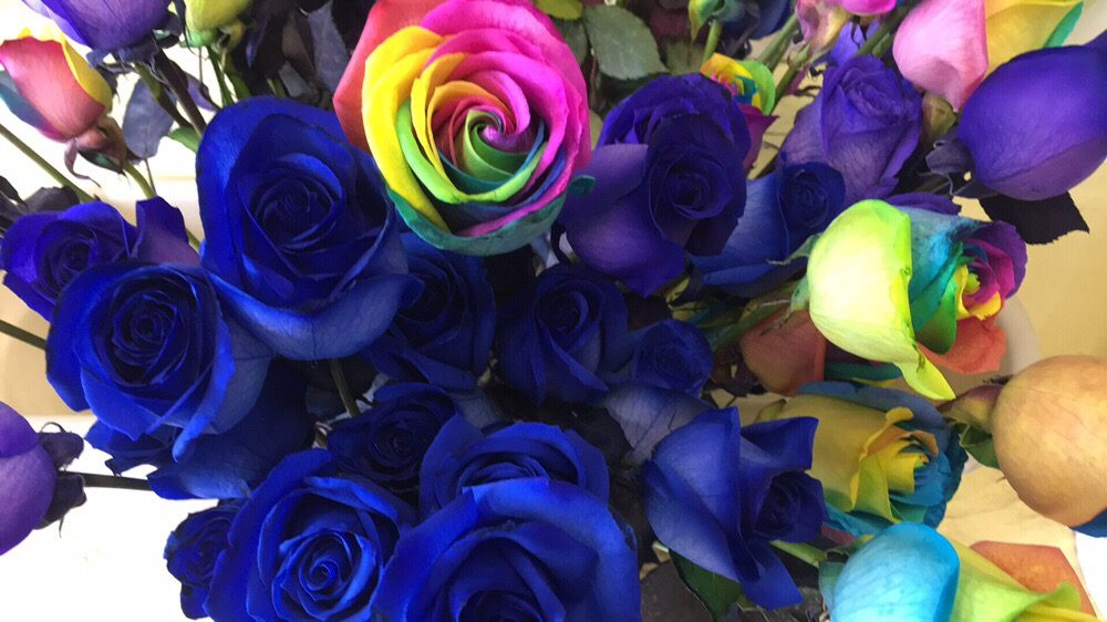 Photo of Everbloom Flowers - San Diego, CA, United States. Blue and rainbow