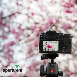 Aperturent - 13 Photos & 43 Reviews - Photography Stores