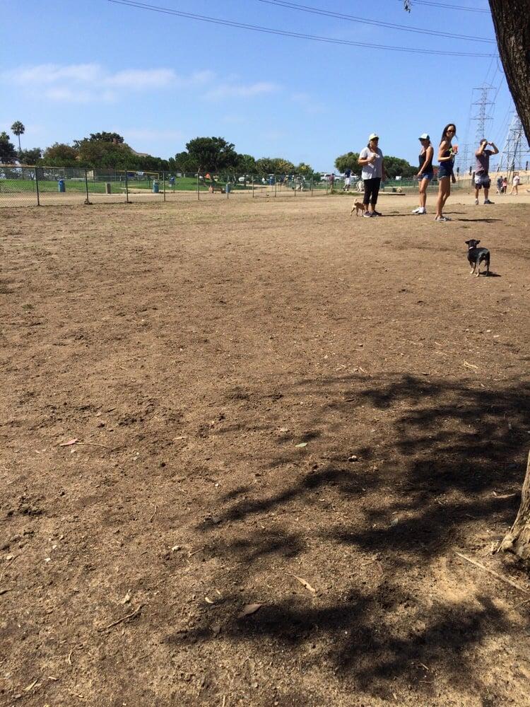 Redondo Beach Dog Park Yelp