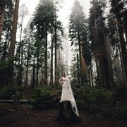 Marissa Photo Of Sequoia Weddings National Park Ca United States