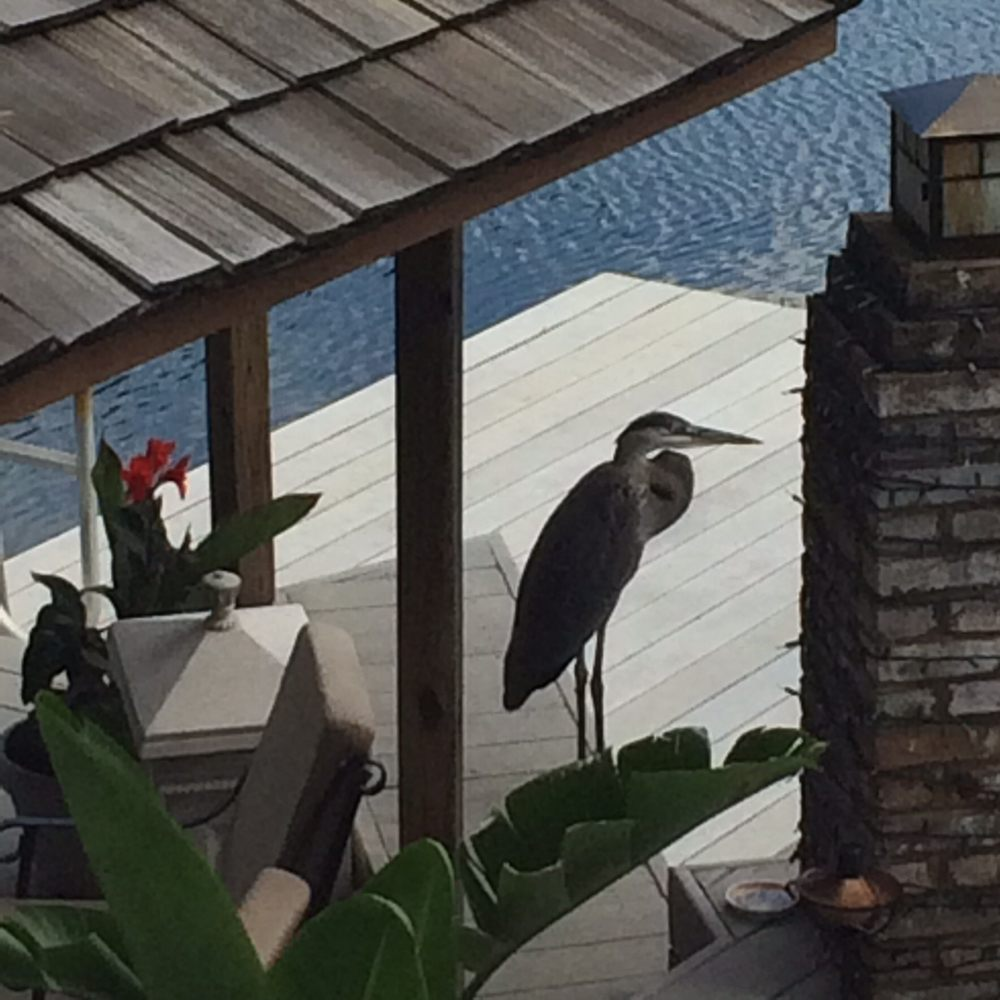 Dockside Bed & Breakfast: 6089 Herring Ct, New Tripoli, PA