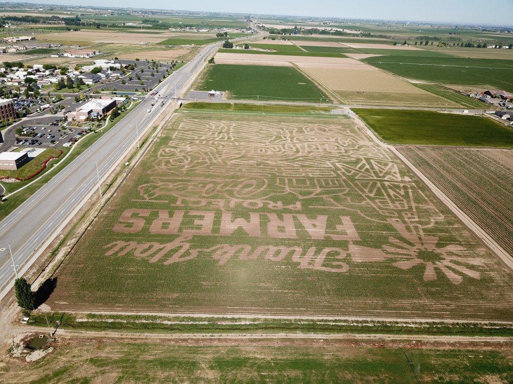 Twin Falls Corn Maze: Grandview Dr N And Poleline Rd, Twin Falls, ID