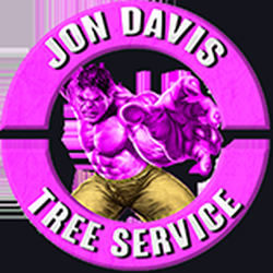 Photo Of Jon Davis Tree Service And Removal Spring Hill Fl United States