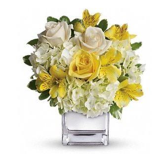 Country Rose Florist: 2275 Schoenersville Rd, Bethlehem, PA