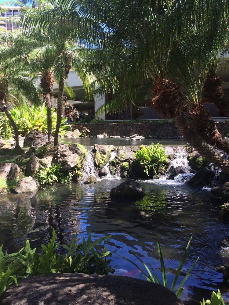 Koi fish pond yelp for Koi pond quezon city