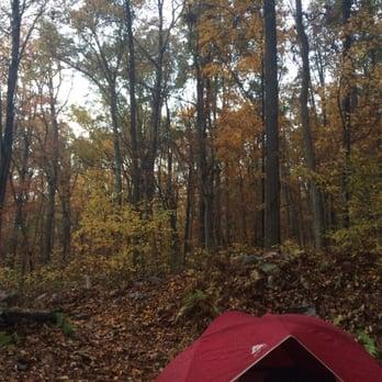 Maple Tree Campground - 34 Photos & 30 Reviews ...