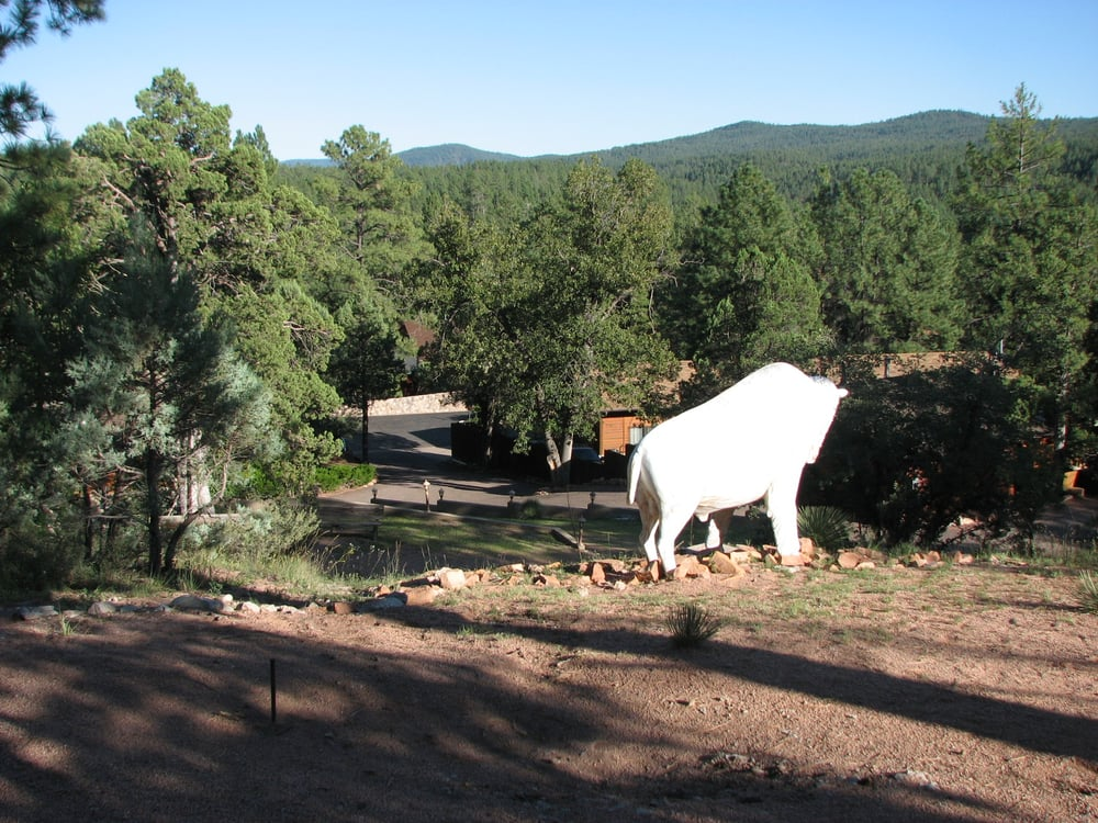 View from hilltop above the cabins has a horseshoe pit yelp for Wooden nickel cabins