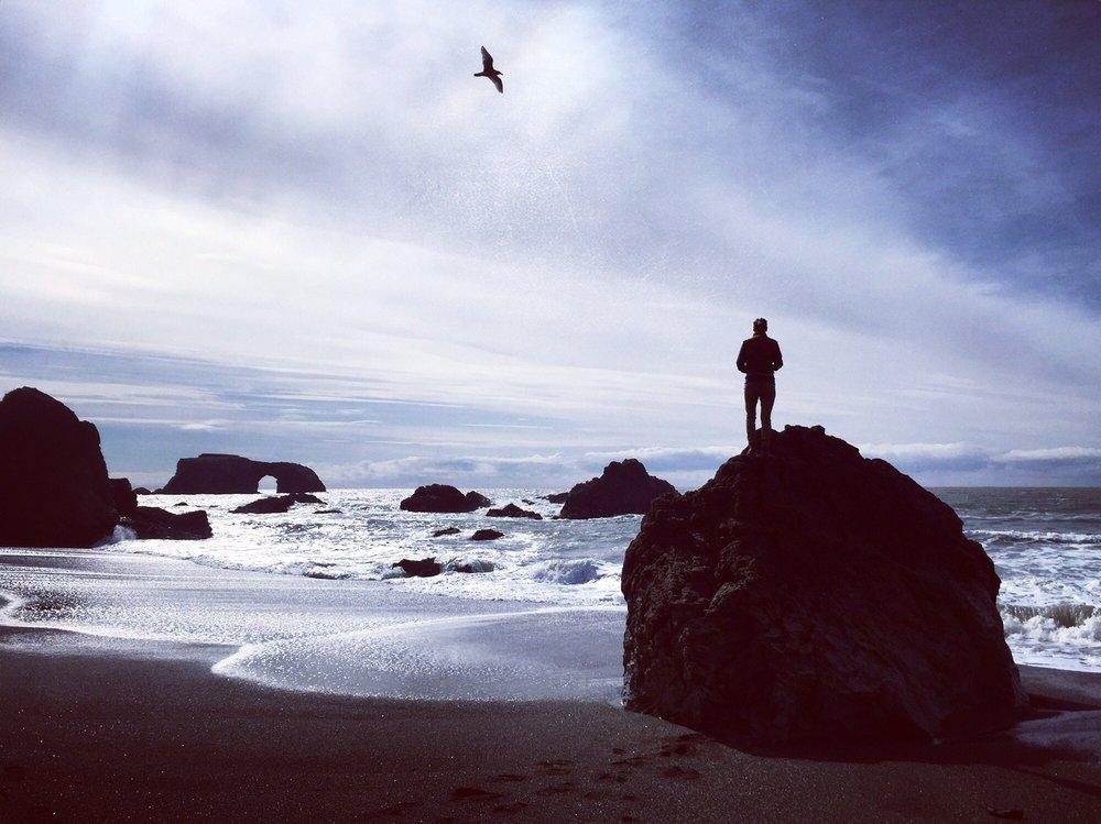 Kortum Trail: Bodega Bay, CA