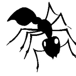 Photo Of Bugz B Gone Pest Control Paso Robles Ca United