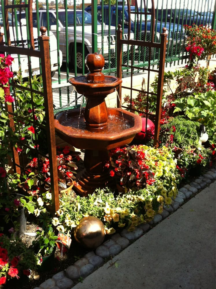 Fountain Yelp