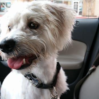 Petco - (New) 31 Photos & 30 Reviews - Pet Stores - 5177