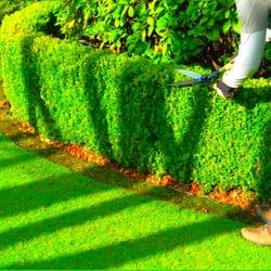 Bulle de vert paysagiste jardinier 3 rue p pini res for Jardinier paysagiste lyon