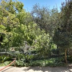 Top Botanischer Garten In Barcelona Spanien Yelp