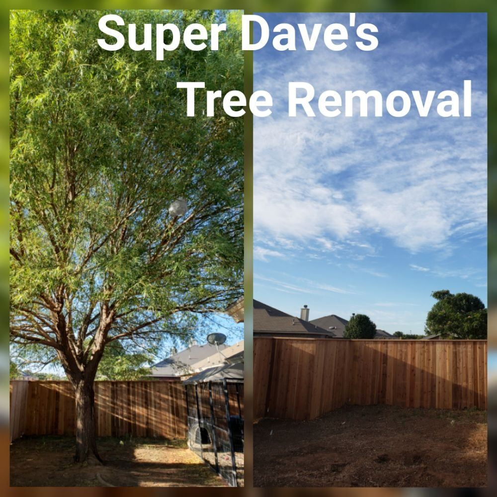 Super Dave's Lawns and More: Lubbock, TX