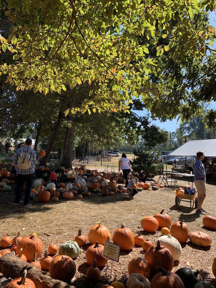 Scottsdale Farms: 15639 Birmingham Hwy, Milton, GA