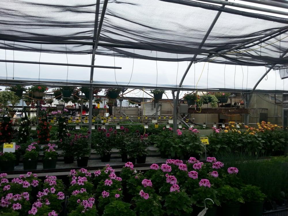 Brawner Greenhouse: 1015 E Broadway St, Fortville, IN