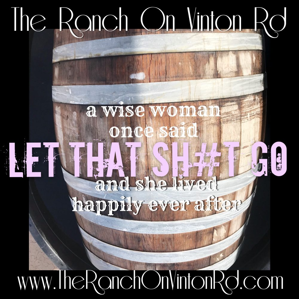 The Ranch on Vinton Rd: 600 N Vinton Rd, Anthony, TX