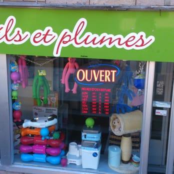 Poils Et Plumes - Animalerie - 569 3E Avenue, Québec, QC