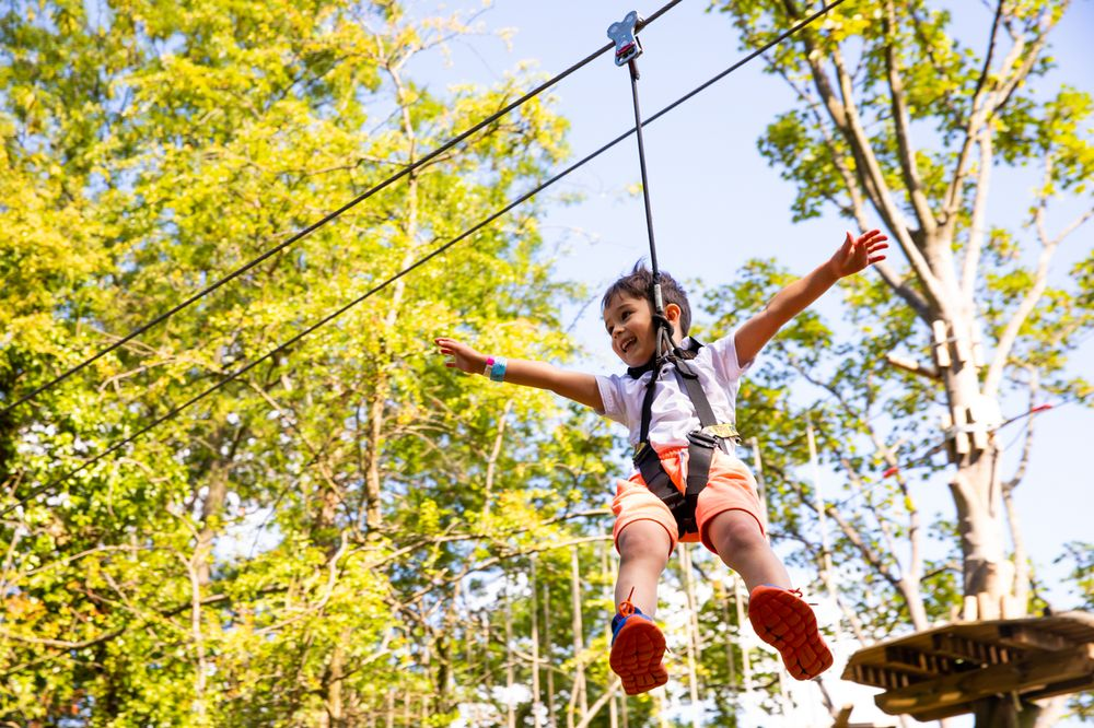 Go Ape Zipline & Adventure Park: 7550 Reservation Dr, Springfield, VA