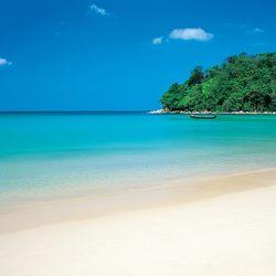 Venus Beach Florida >> Visions By Venus Reiki Orlando Fl Phone Number Yelp