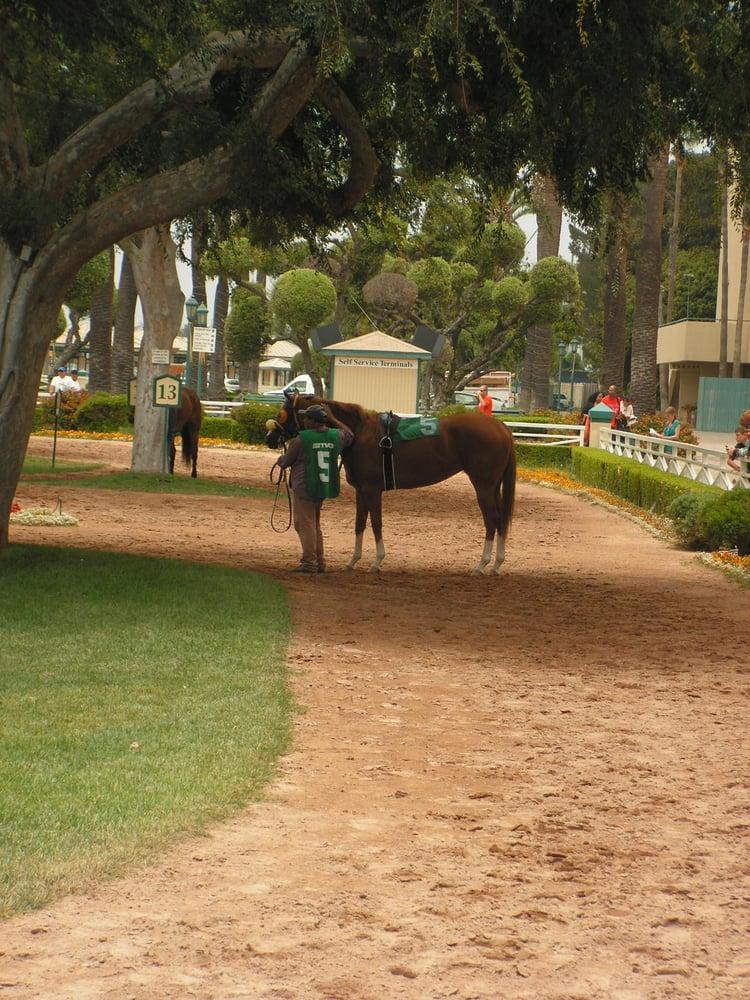 Photos For Hollywood Park Race Track Yelp