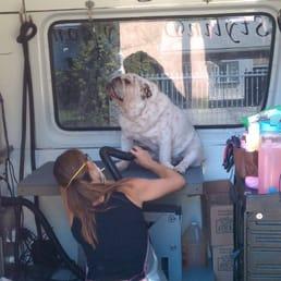 Margaret S Mobile Dog Grooming